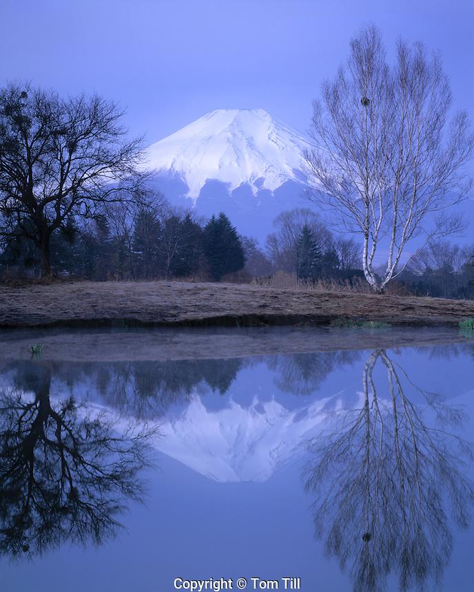 Mt. Fuji Reflection, Fuji-Hazone-Izu National Park, Japan      12,388 foot dormant volcano  Reflected in Tsurga Ponds/Oshino