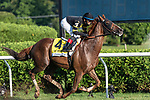 """August 29 2020: Channel Maker #4, ridden by Manny Franco and trained by Bill Mott win the Sword Dancer (G1), a Breeder's Cup World Championships """"Win and You're In Race"""" at Saratoga Race Course in Saratoga Springs, N.Y. Rob Simmons/Eclipse Sportswire/CSM"""