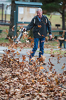NWA Democrat-Gazette/ANTHONY REYES &bull; @NWATONYR<br /> Roger Duncan, with the Tontitown Parks Department, blows leaves Monday, Nov. 16, 2015 from a parking lot near the city's offices in Tontitown. Recent storms have put a lot of leaves on the ground in the lot blocking parking spaces and drainage.