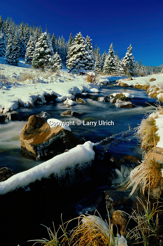 Winter morning<br />