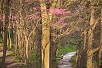 BJ 4.18.17 St. Joseph Lake Scenic 2136.JPG by Barbara Johnston/University of Notre Dame