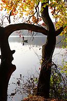 Lütauer See, Lütauersee, Lauenburgische Seenplatte, bei Mölln, Herzogtum Lauenburg, Schleswig-Holstein, Norddeutschland, Deutschland