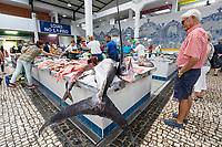 Portugal, Lissabon Region, Setubal: Fischstand in der Markthalle Mercado do Livramento mit frischem Marlin | Marlin on fresh fish stall inside the Mercado do Livramento taken in the morning, Avenida Luisa Todi, Setubal; Lisbon region; Portugal, Europe