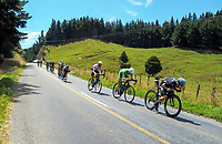 NZ's Hayden McCormick (right) leads Nick Reddish (2nd right) and the peleton on the return leg down Whangaehu Valley Rd. Stage One of the 2018 NZ Cycle Classic UCI Oceania Tour in Wairarapa, New Zealand on Wednesday, 17 January 2018. Photo: Dave Lintott / lintottphoto.co.nz
