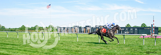 Foray winning at Delaware Park on 6/20/16