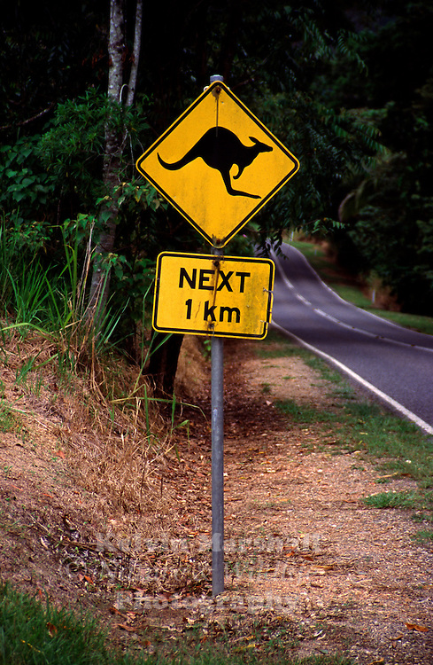 Slow down !! Kangaroo warning road sign.