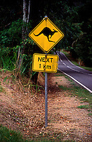 Slow down !! Kangaroo warning road sign.