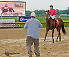 Long on Value winning at Delaware Park on 6/10/13