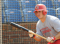 August 1, 2009: Infielder Matt Rigoli (29) of the Johnson City Cardinals, rookie Appalachian League affiliate of the St. Louis Cardinals, in a game at Howard Johnson Field in Johnson City, Tenn. Photo by: Tom Priddy/Four Seam