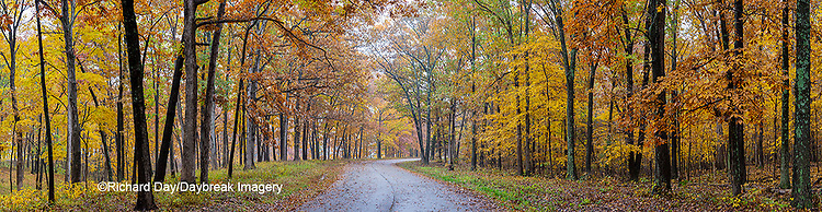 63895-15909 Road in fall color Stephen A. Forbes State Park Marion Co. IL