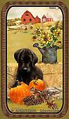 GIORDANO, STILL LIFE STILLLEBEN, NATURALEZA MORTA, paintings+++++,USGI2736,#I# autumn,harvest pumpkins