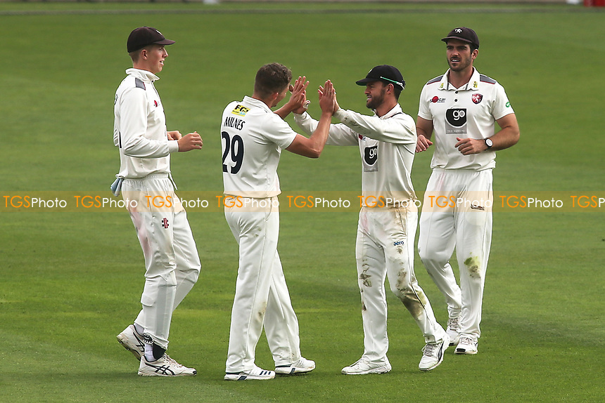 Kent bowler Matt Milnes and fielder Heino Kuln celebrate taking the wicket of Surrey's Sam Curran during Surrey CCC vs Kent CCC, Specsavers County Championship Division 1 Cricket at the Kia Oval on 7th July 2019