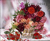 Interlitho-Alberto, FLOWERS, BLUMEN, FLORES, photos+++++,pink flowers,KL16541,#f#, EVERYDAY