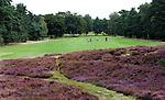Arnhem - Rosendaelsche Golfclub hole 2.