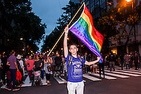 A man holds up a gay flag while thousands of Argentinians take part in the XXII Gay Pride in Buenos Aires, Nov 9, 2013. VIEWpress/Juan Gabriel Lopera.