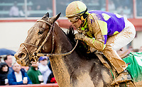 CHARLES TOWN, WV - APRIL 22: Imperative #5, ridden by Javier Castellano, wins the Charles Town Classic on Charles Town Classic Day at Charles Town Races and Slots on April 22, 2017 in Charles Town, West Virginia (Photo by Scott Serio/Eclipse Sportswire/Getty Images)