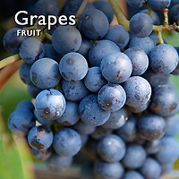 Grapes Pictures |  Grapes Food  Photos & Images
