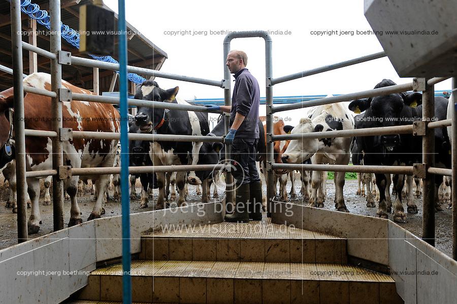 DEUTSCHLAND Meierei Kruses Hofmilch in Rellingen<br /> Schleswig-Holstein, Herstellung von koscheren Milchprodukten unter Kontrolle eines juedischen Rabbiner, Melkstand von Sohn Stefan Kruse