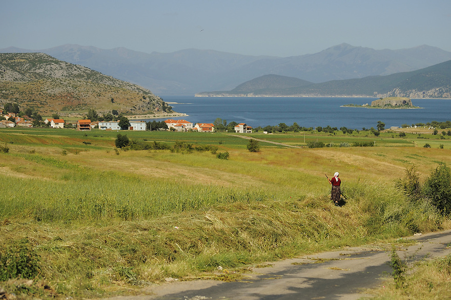 Landscape in Lake Prespa National Park. Albania June 2009