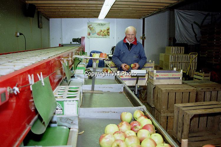 Foto: VidiPhoto..BEMMEL - Minimaal eenmaal in de week rollen er bij fruitkweker Uijttewaal uit Bemmel nog appels door de sorteermachine. De Jonagolds komen uit de koelcel en worden op de boerderij verkocht aan particulieren of naar de veiling gebracht. De voorraad slinkt inmiddels aardig en de verwachting is dat half mei de laatste appels de sorteerband afrollen. Dan is het wachten tot begin augustus voordat er weer een verse voorraad van de bomen gehaald kan worden. Uijttewaal junior bezit een dikke 12 hectare appelbomen. Senior (foto) helpt nog graag een handje mee..