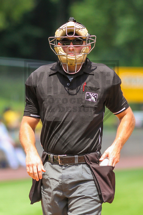 Home plate umpire Jason Johnson during a Midwest League game between the Wisconsin Timber Rattlers and the Burlington Bees on July 10, 2017 at Fox Cities Stadium in Appleton, Wisconsin.  Burlington defeated Wisconsin 6-3. (Brad Krause/Krause Sports Photography)