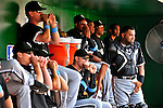 20 June 2010: Members of the Chicago White Sox cheer on the batter from the dugout during a game against the Washington Nationals at Nationals Park in Washington, DC. The White Sox swept the Nationals winning 6-3 in the last game of their 3-game interleague series. Mandatory Credit: Ed Wolfstein Photo