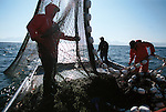 Family salmon seiners fishing in the waters around St. Petersburg, Alaska in Alaska's Southeast in the summer of 2001.