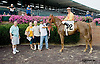 Purim's Gold winning at Delaware Park on 8/20/14