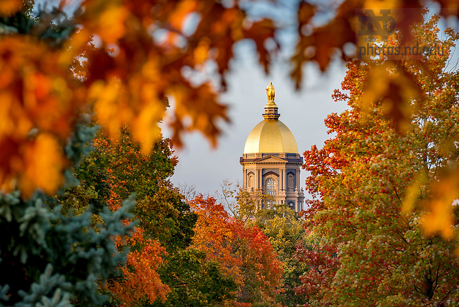 October 28, 2016; Main Building surrounded by fall color. (Photo by Matt Cashore/University of Notre Dame)