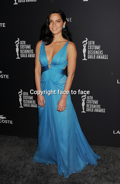 BEVERLY HILLS, CA- FEBRUARY 22: Actress Olivia Munn arrives at the 16th Costume Designers Guild Awards at The Beverly Hilton Hotel on February 22, 2014 in Beverly Hills, California.<br /> Credit: Mayer/face to face<br /> - No Rights for USA, Canada and France -