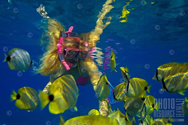 Woman snorkeling with tropical fish at Hanauma bay, Oahu