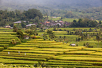Jatiluwih, Bali, Indonesia.  Terraced Rice Fields.  Village in Background.