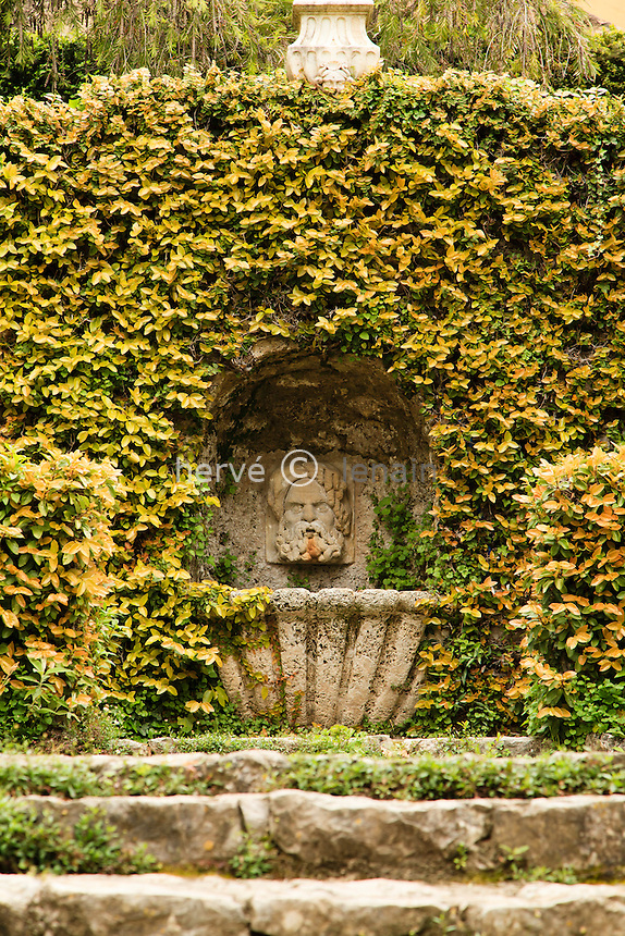 France, Alpes-Maritimes (06), Menton, jardin Serre de la Madone :.fontaine et Ficus pumila tapissant l'entourage.