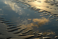 Sand ripples and the reflection of the sky on Singing Sands Beach, near Tobermory, Ontario.