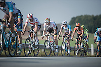 German national champion André Greipel (DEU/Lotto-Soudal) drafting Austria's national champion Matthias Brändle's (AUT/IAM) wheel<br /> <br /> 12th Eneco Tour 2016 (UCI World Tour)<br /> stage 3: Blankenberge-Ardooie (182km)