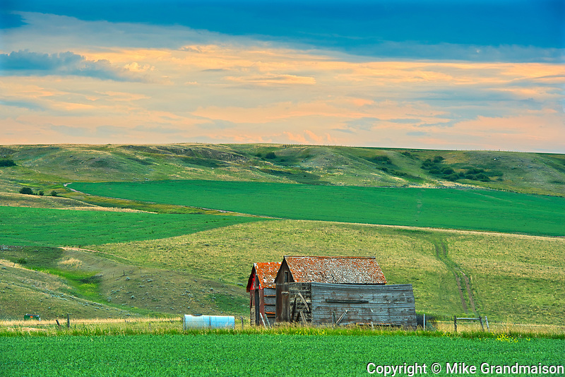 Old farmstead at dusk<br />