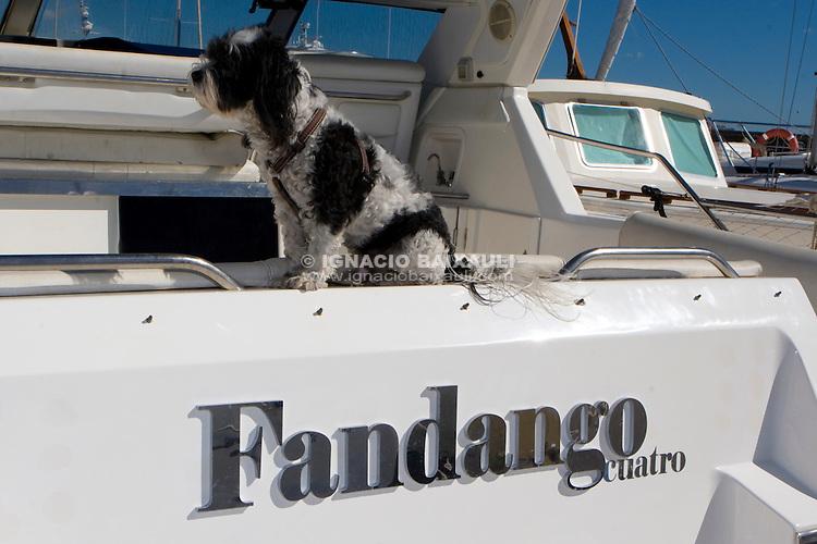 Fandango cuatro .XXIII Edición de la Regata de Invierno 200 millas a 2 - 6 al 8 de Marzo de 2009, Club Náutico de Altea, Altea, Alicante, España