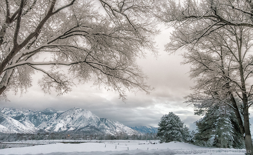 Taken from the Salt Lake Country Club at the base of the Wasatch Range after another winter storm.