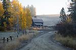Idaho, North, Kootenai County, St. Maries, Rose Lake. A farm scene with barn and horse on a foggy autumn morning.