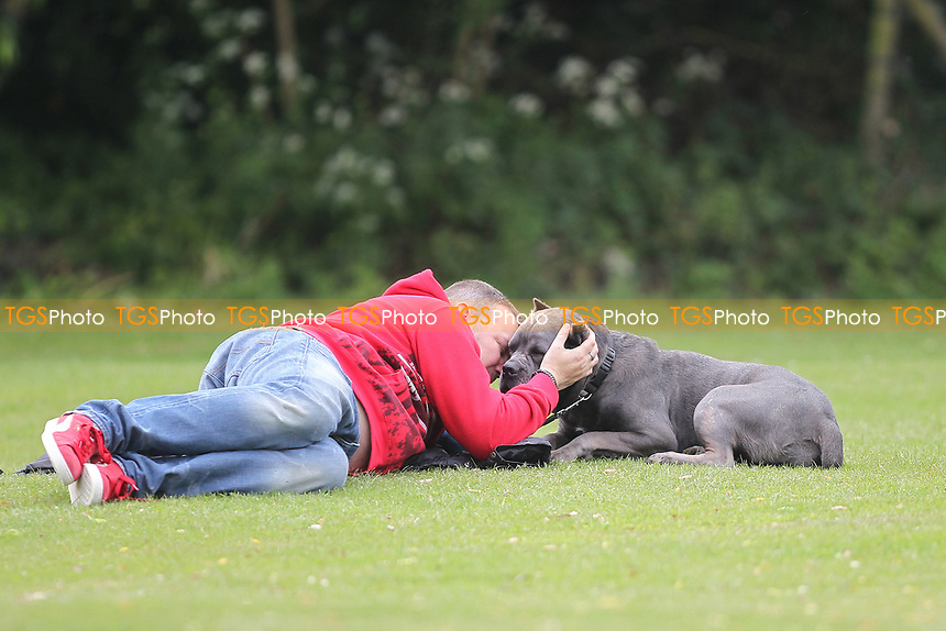 One man and his dog during South Woodford CC vs Billericay CC, Shepherd Neame Essex League Cup Cricket at Highfield Road on 6th May 2017
