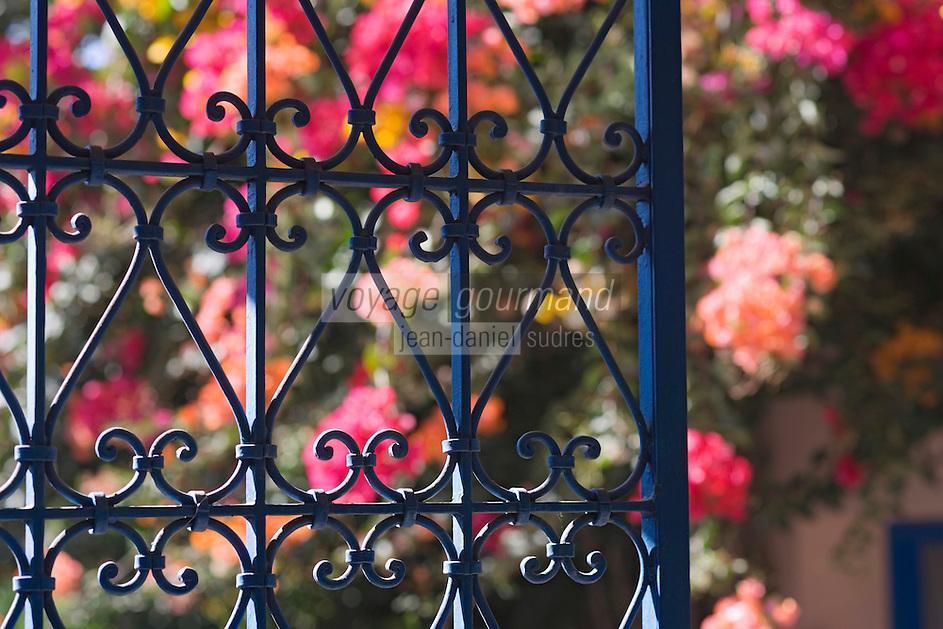 Afrique/Afrique du Nord/Maroc/Rabat: Hotel - Maison d'Hote Villa Mandarine détail des grilles en fer forgé et flore du jardin