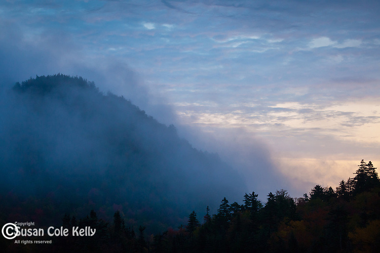 Sunrise mist in Pinkham Notch, White Mountain National Forest, NH, USA