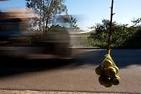 Divinopolis_MG, Brasil...Comercio informal de mexerica na rodovia MG-50 em Divinopolis...The informal trade of tangerine on MG-50 highway in Divinopolis...Foto: LEO DRUMOND / NITRO