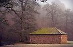 A stone barn near oak trees in England