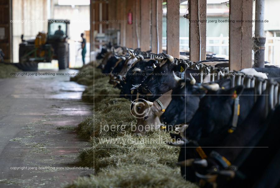 POLAND, Juchowo, organic milk cow farm / POLEN, Juchowo, biologisch wirtschaftender Milchviehbetrieb, artgerechte Stallhaltung