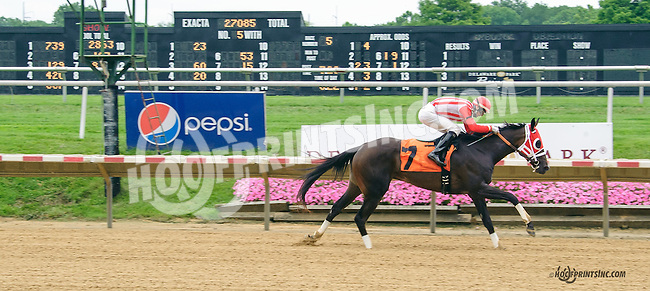 Creature of Luxe winning at Delaware Park on 7/4/15
