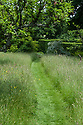 Mown grass path through meadow, Vann House and Garden, Surrey, mid June.