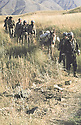 Iraq 1983 <br /> Peshmergas on their way to Haj Omran reaching the front line deserted by the Iraqi army    <br /> Irak1983 <br /> Peshmergas arrivant a Haj Omran, traversant un champ mine par l'armee irakienne