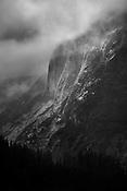 場所:ジュノー南部 トンガス国有林(英名:South of Juneau Tongass National Forest)