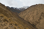 Canyon in mountains, Sarychat-Ertash Strict Nature Reserve, Tien Shan Mountains, eastern Kyrgyzstan